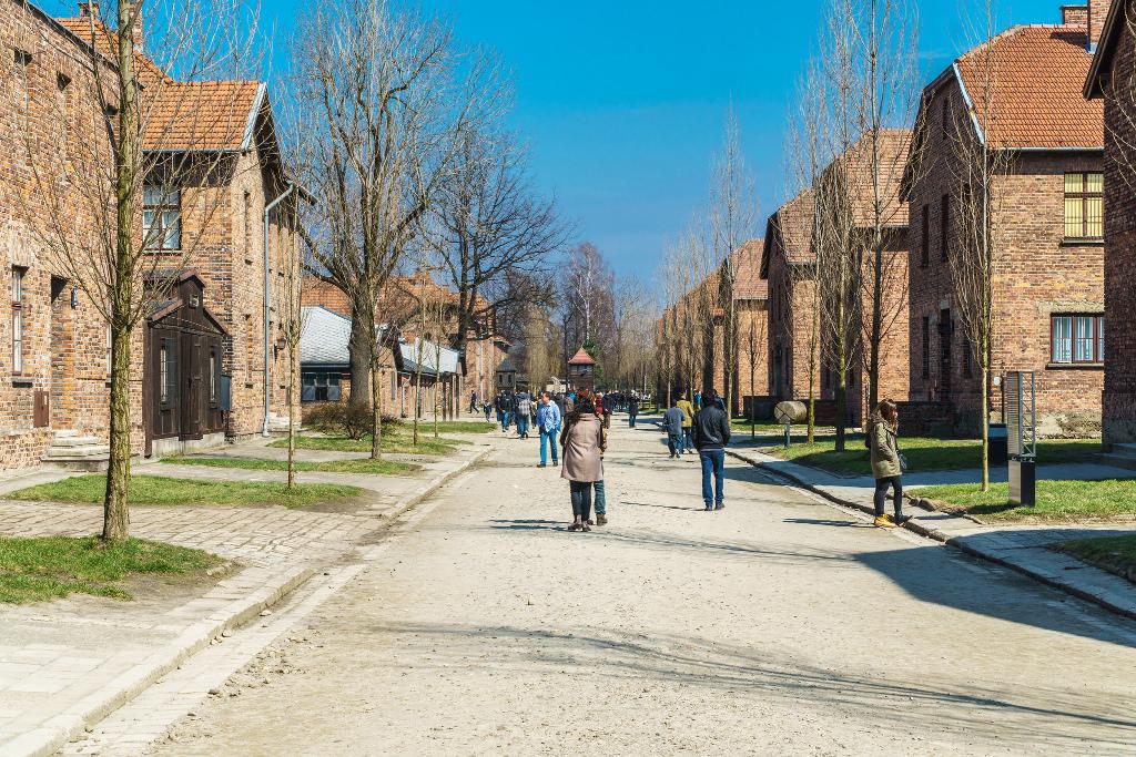 Varsovia y cracovia a tu aire pasado y presente de dos for Oficina turismo polonia
